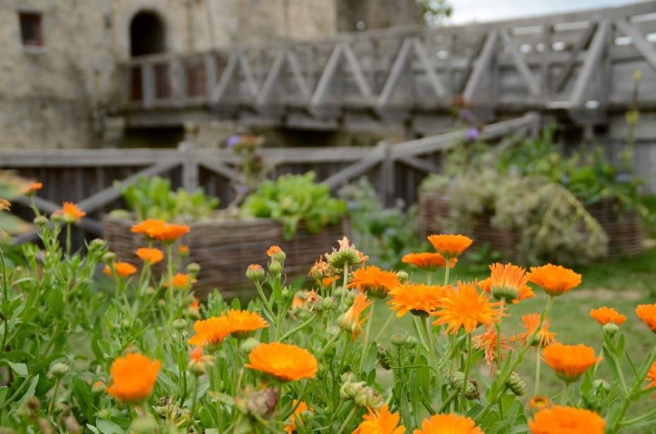 Saint Mesmin et son jardin médiéval