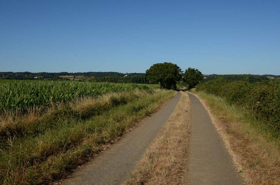 Sentier quittant Bazoges vers la Jaudonnière